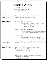 Example Of Simple Resume Inspiration Best Basic Resume Samples A Simple Sample How To Write For First Job