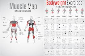 Bodyweight Exercises Chart And Travel Workout Cards 64tk Tv