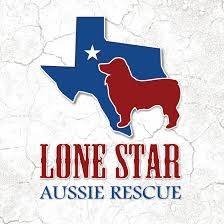 Pets for Adoption at Lone Star Aussie Rescue, in Ovilla, TX | Petfinder