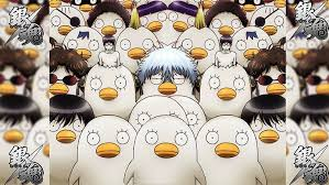 We have 11 images about wallpaper gintama 4k including images, pictures, photos, wallpapers, and more. Elizabeth Gintama 1080p 2k 4k 5k Hd Wallpapers Free Download Wallpaper Flare