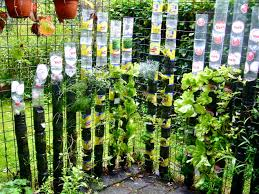 Vertical Kitchen Garden Can Food Crops Be Grown Safely In Plastic Containers Willem Van
