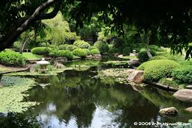 Image result for rockhampton botanical gardens and zoo