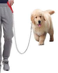 Amazon Com Hg Kangqi Heavy Duty Dog Chain Dog Leash For