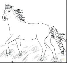 Elegant Of Race Horse Coloring Pages To Print Stock Printable