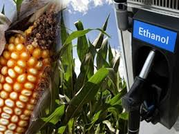 GRASSLEY: Anti-ethanol campaign ignores facts