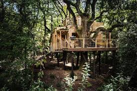 Tree Houses And Cabins Holidays Worldu0027s Best Responsible Treehouse Lake District