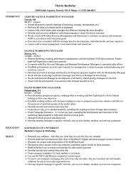 Sales Marketing Manager Resume Samples Velvet Jobs