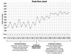 Peak Flow Reading Chart 11 Best Peak Flow Meters Images Flow Asthma Peak