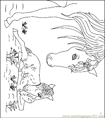 Small Picture Horse Coloring Page 30 Coloring Page Free Horse Coloring Pages