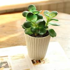 Small plant for office desk Reception Desk Office Desk Small Home Decoration Artificial Flower Bonsai Small Bonsai Super Artificial Plantsin Artificial Dried Flowers From Home Garden On Aliexpresscom Office Desk Small Home Decoration Artificial Flower Bonsai Small
