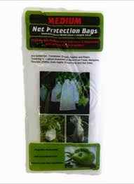 Gardman Garden Netting 2 X 3m  Bunnings WarehouseFruit Tree Netting Bunnings