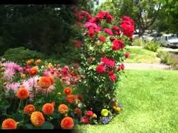 Small Picture Small flower garden ideas YouTube