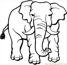 Small Picture Elephant 18 Coloring Page Coloring Page Free Elephant Coloring
