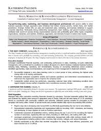 Commercial Finance Manager Sample Resume Collection Of Solutions Executive Resume Examples Pdf Resume Ixiplay 12