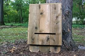 step 7 learn how to make a cedar bat