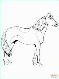 Wild Horse Coloring Pages Luxury Wild Horse Coloring Pages Mustang