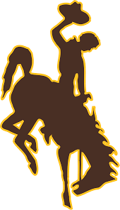 University Of Wyoming Football Depth Chart 2019 Wyoming Cowboys Football Team Wikipedia