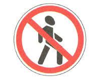 Зачем нужны правила дорожного движения Светофор дорожная  Движение пешеходов запрещено