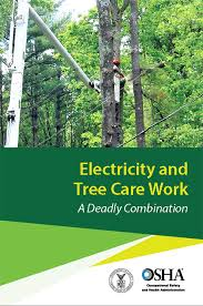 publications occupational safety and health administration electrical safety