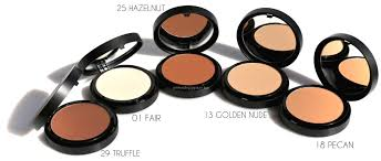 Bare Minerals BAREPRO Powder Foundation Core Coverage Brush.