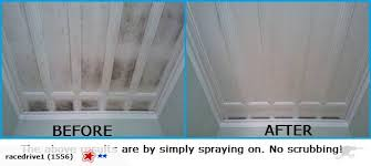 free clean mould mildew off