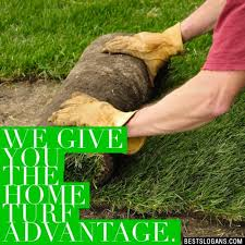50 Catchy Landscaping Slogans Gardening Lawn Care Tree