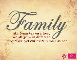 Unity Quotes Custom Wonderful 48 Best Today S Quote Images On Pinterest Plus Family