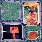 Sad Sappy Sucker album by Modest Mouse