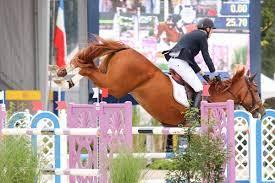 Jos Verlooy en Belgische paarden scoren in Beijing - Equnews Belgium
