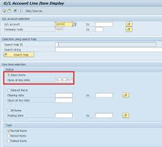 Display Chart Of Accounts In Sap Tcode Sap Clearing Of Open Items Automatic And Manual Clearing