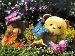 Teddy bear pictures ...