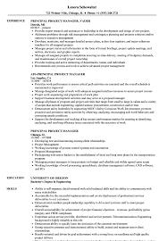Principal Project Manager Resume Samples Velvet Jobs