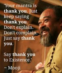 Mooji Quotes Interesting Your Mantra Is Thank You True Don't Waste Your Life Neither