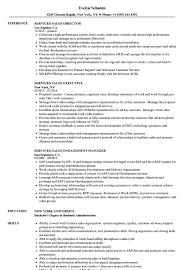 Services Sales Resume Samples Velvet Jobs