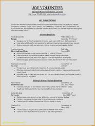 Resume Templates Free Download Word Project Brief Template Word
