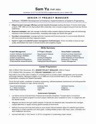 Resume Format Sales Manager Inspirational It Director Resume Samples