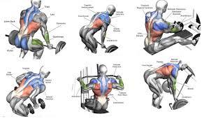 Training Exercises Training Exercises Back