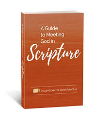 A Guide to Meeting God in Scripture: Insight from the Great Adventure -  Kindle edition by Cavins, Jeff, Christmyer, Sarah, Corbitt, Sonja, Hart,  Mark, Smith, Thomas, Burnette, Bishop Kurt, Mueller, Chris, Dunn,
