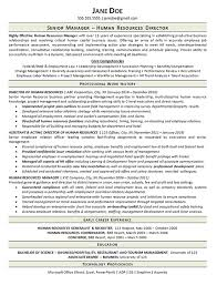Human Resources Resume Gorgeous View Human Resources Manager Resume Example