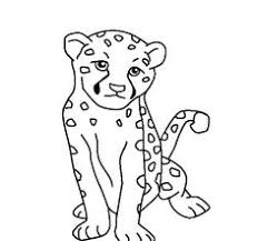 Cheetah Color Sheet Cheetah Coloring Pages Coloring Pages For