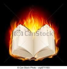 burning book csp8711183