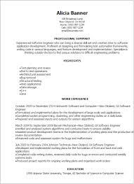 Resume Examples Engineering Delectable Softwar Marvelous Professional Summary Resume Examples For Software