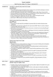 Service Delivery Manager Resume Samples Velvet Jobs