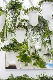 Indoor Garden 5 Easy Indoor Garden Ideas Small Space Ideas