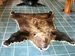 bear hide rug black bear rugs brown bear rugs faux bear skin rug pottery barn