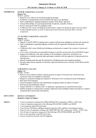targeted resume sample targeting analyst resume samples velvet jobs