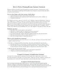 Resume Summary Examples For Customer Service Penza Poisk