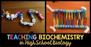 biochemistry resources for the high school biology classroom  biochemistry resources for the high school biology classroom