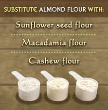 What Can You Substitute For Almond Flour