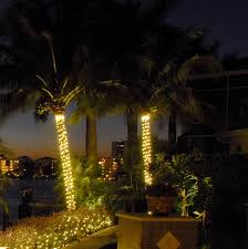 solar lights for trees palm tree outdoor lights photo 3